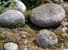 The Cursing Stones