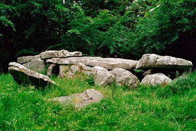Burren Forest Giant's Grave