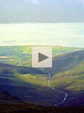 White Brook video