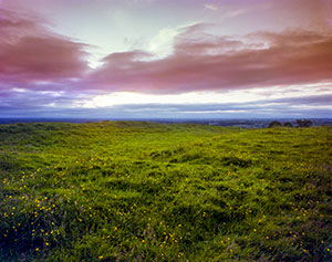 The Hill of Tara - Voices from the Dawn